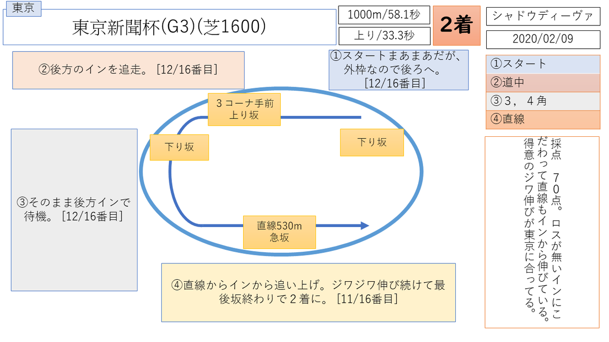 シャドウディーバ 東京新聞杯