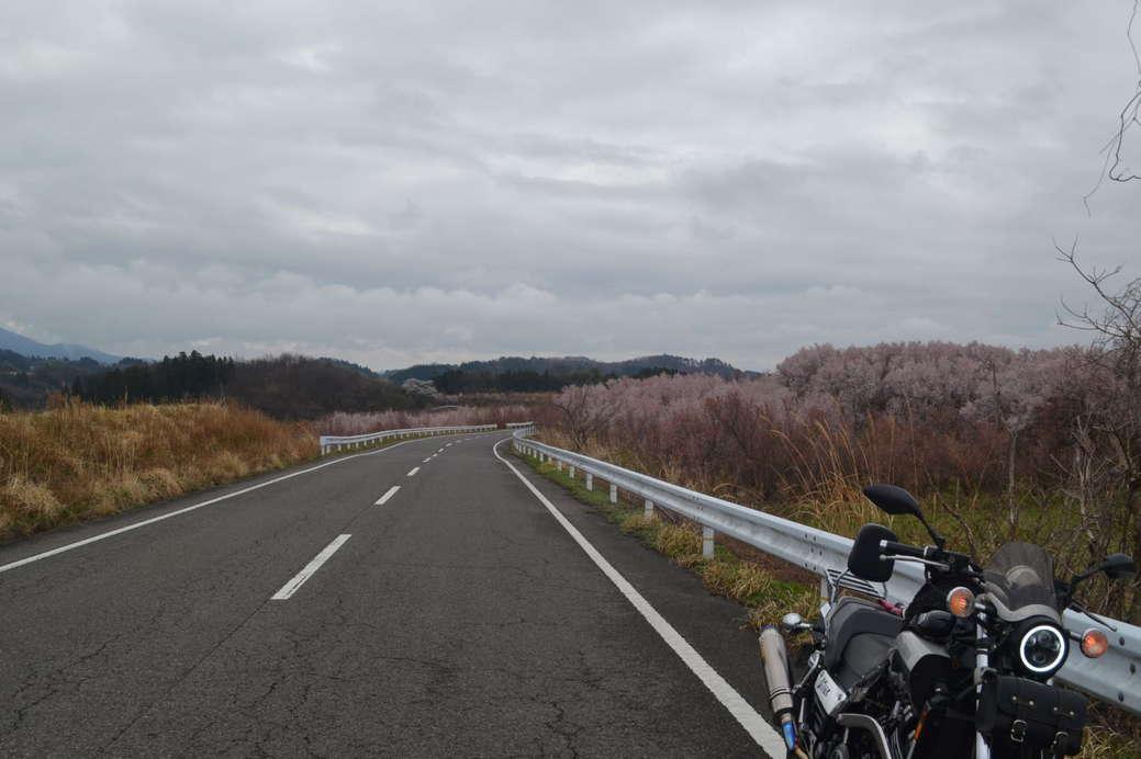 f:id:noridakara:20200412221924j:plain