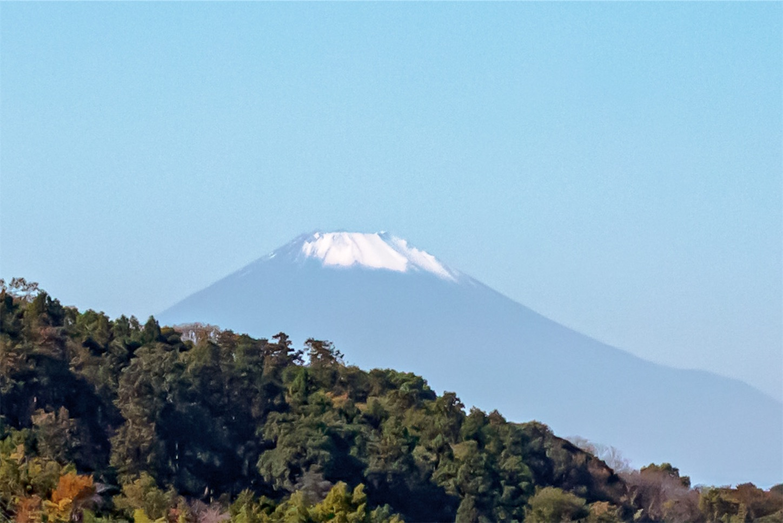f:id:noriharu-katakura:20201114205557j:plain