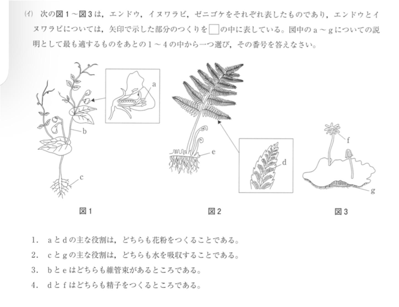 f:id:noriharu-katakura:20210215215123j:plain