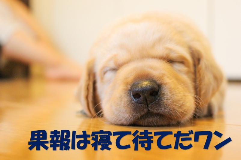 f:id:norikazutake:20190603112450p:plain