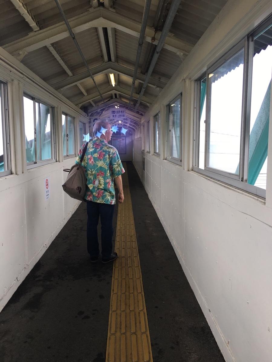 f:id:norikowatanabe7:20190610161443j:plain