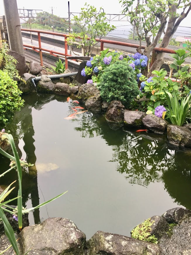 f:id:norikowatanabe7:20190610162459j:plain