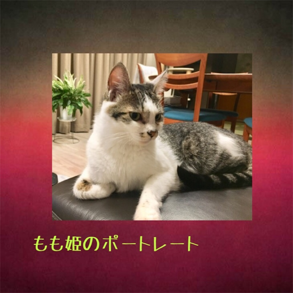 f:id:norikowatanabe7:20190812144315j:plain