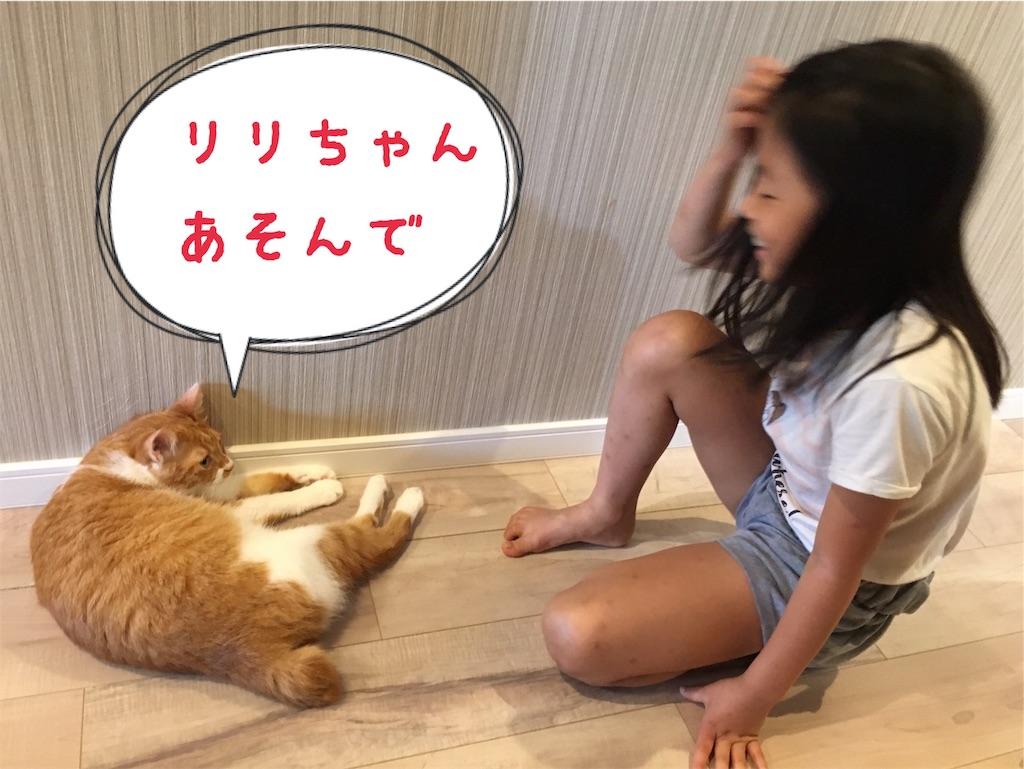f:id:norikowatanabe7:20190812144505j:plain