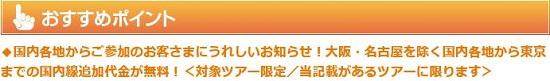 JALツアーで国内線無料