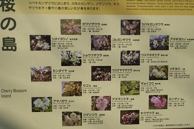 f:id:norikun2016:20170225202710j:plain