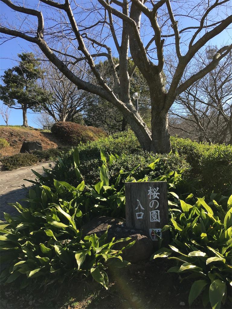 f:id:norimaki7chan:20190104104029j:image