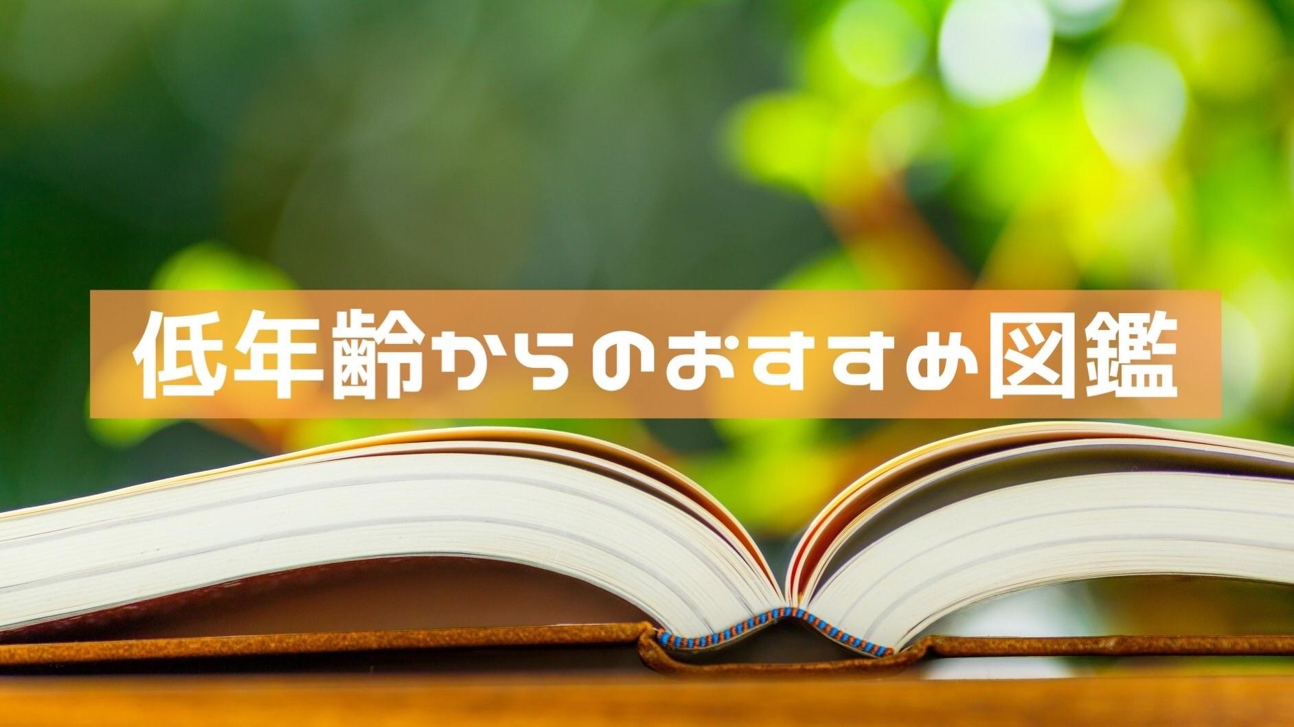 f:id:norimono-chiiku:20200216223323j:image
