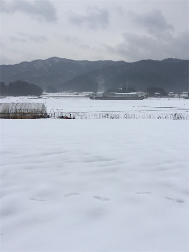f:id:norimurata:20210119002443j:image