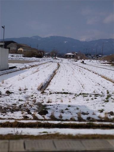 f:id:norimurata:20210226235839j:image