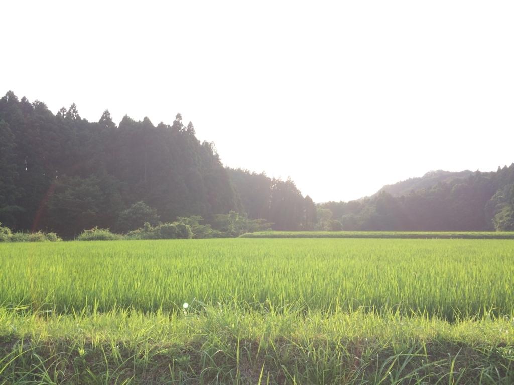 f:id:norioishiwata:20170725093103j:plain