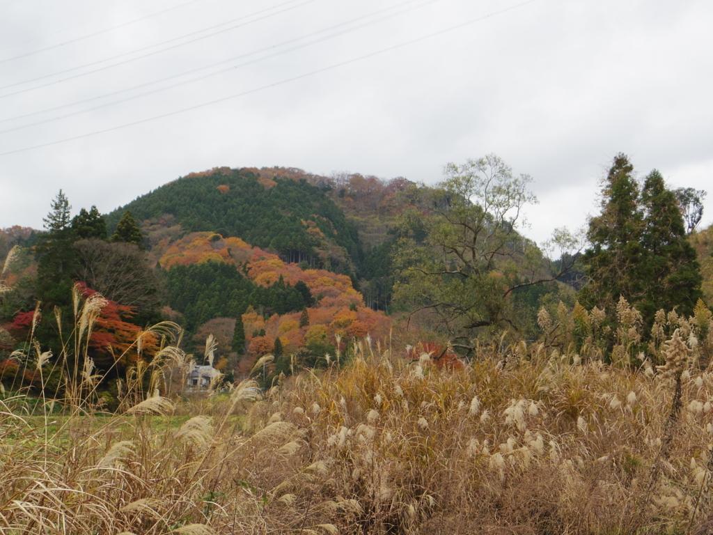 f:id:norioishiwata:20171201101746j:plain
