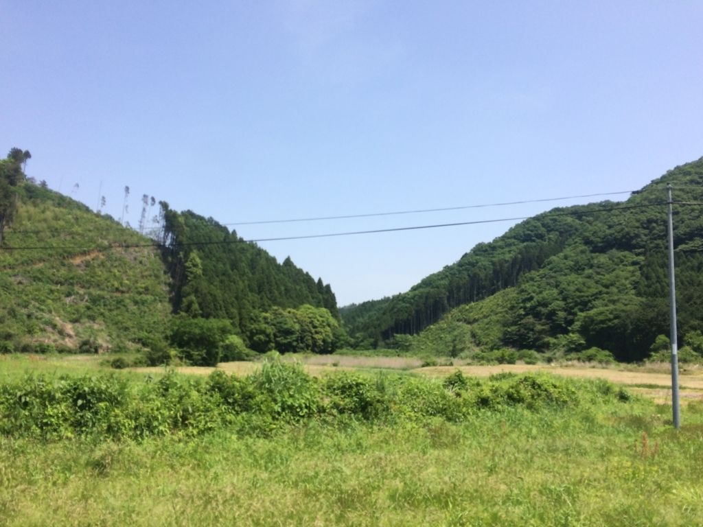 f:id:norioishiwata:20180516135046j:plain