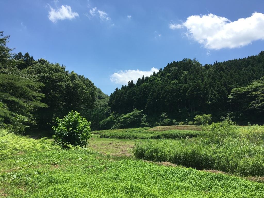 f:id:norioishiwata:20180702135127j:plain