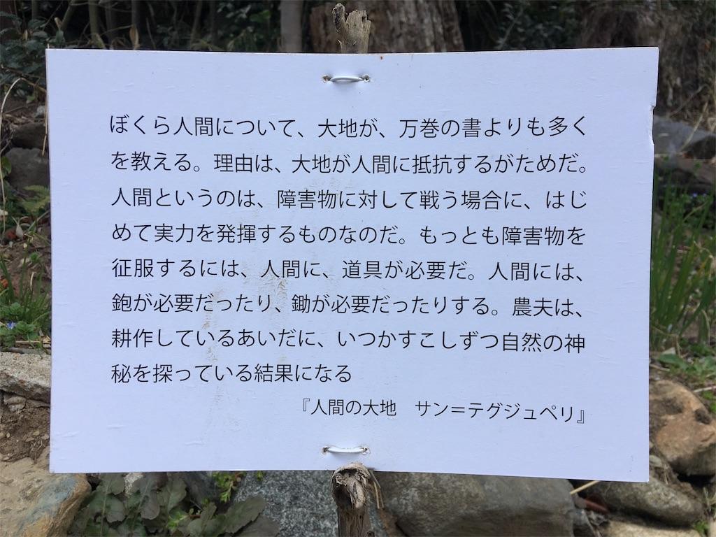 f:id:norioishiwata:20190405082332j:image