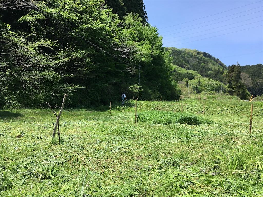 f:id:norioishiwata:20200508080850j:image