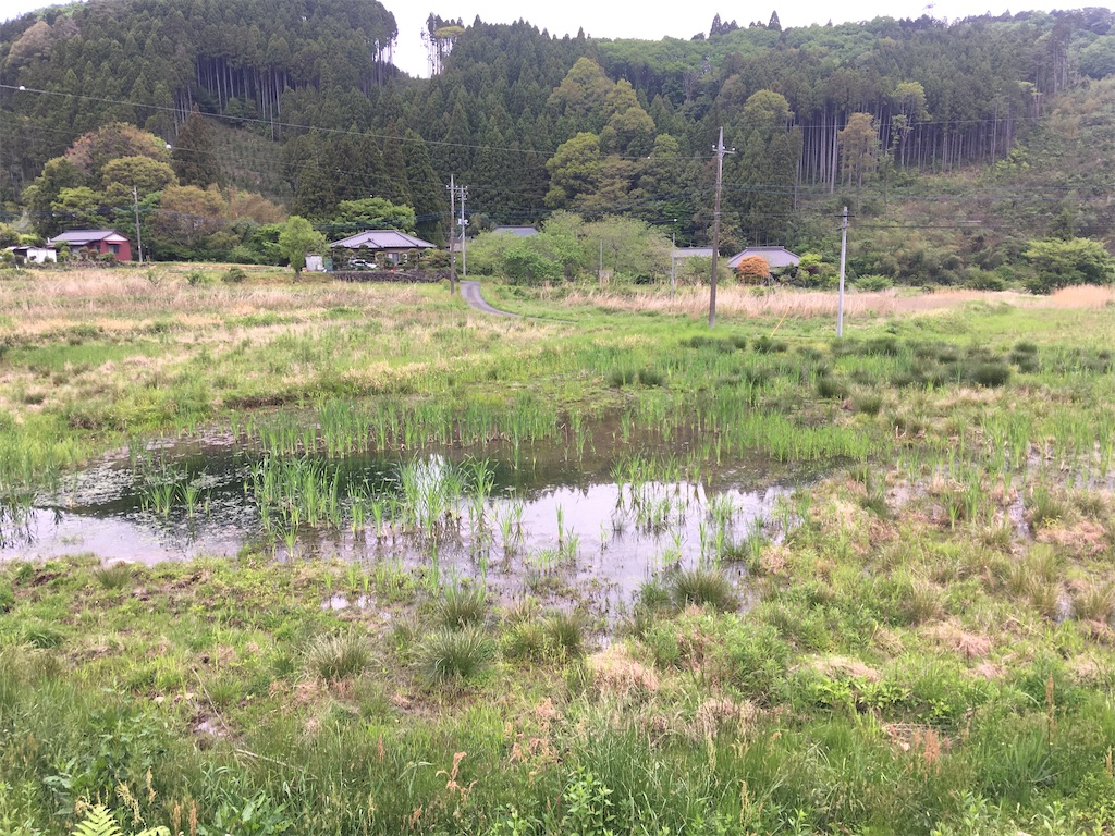 f:id:norioishiwata:20200514151209j:image