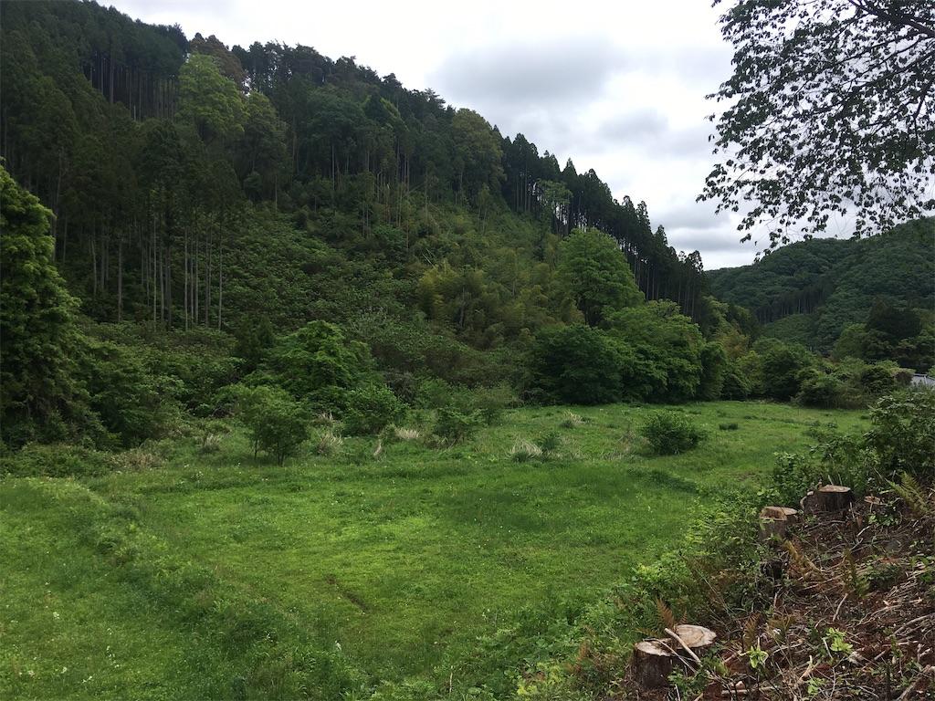 f:id:norioishiwata:20200603103834j:image