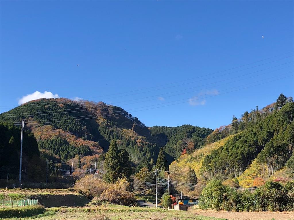 f:id:norioishiwata:20201123080809j:image