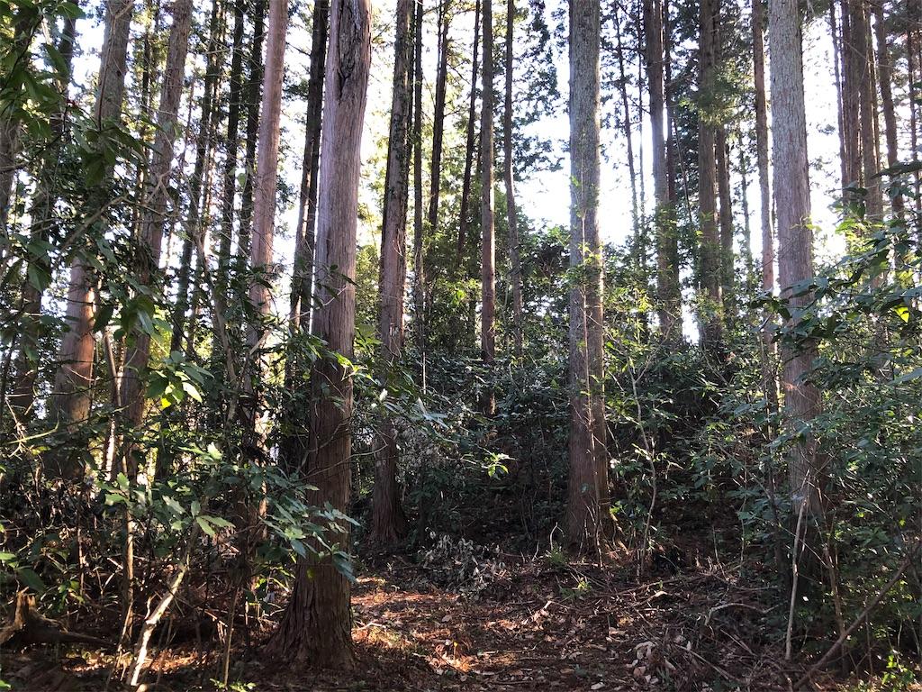 f:id:norioishiwata:20210207073157j:image
