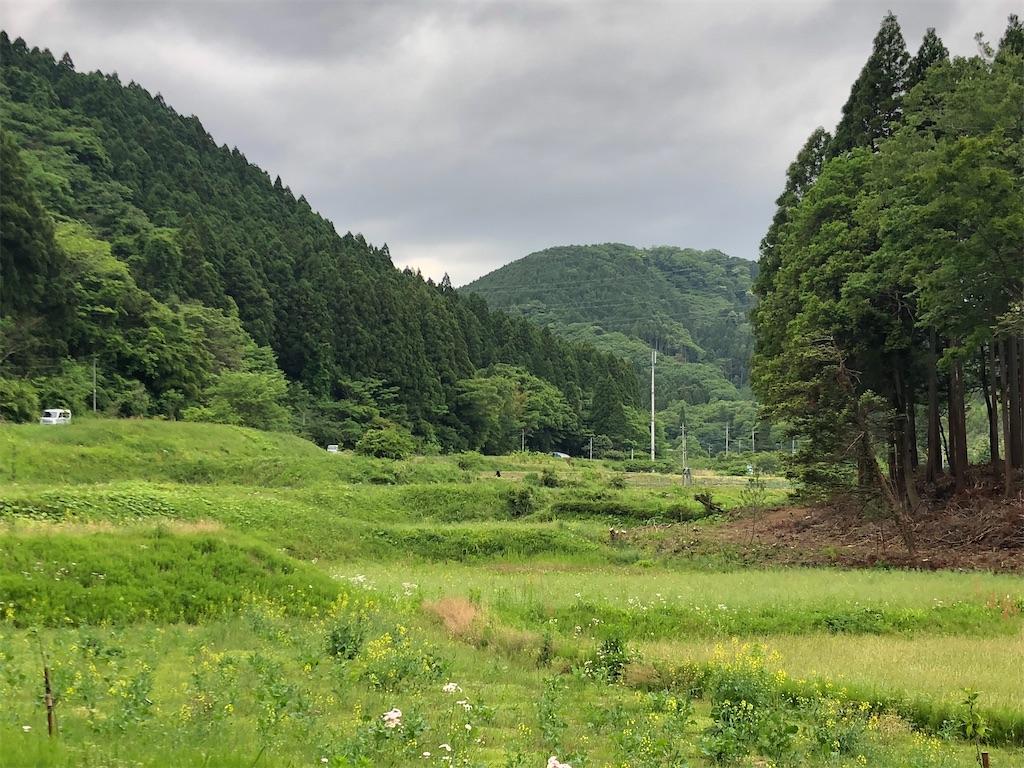 f:id:norioishiwata:20210517080441j:image