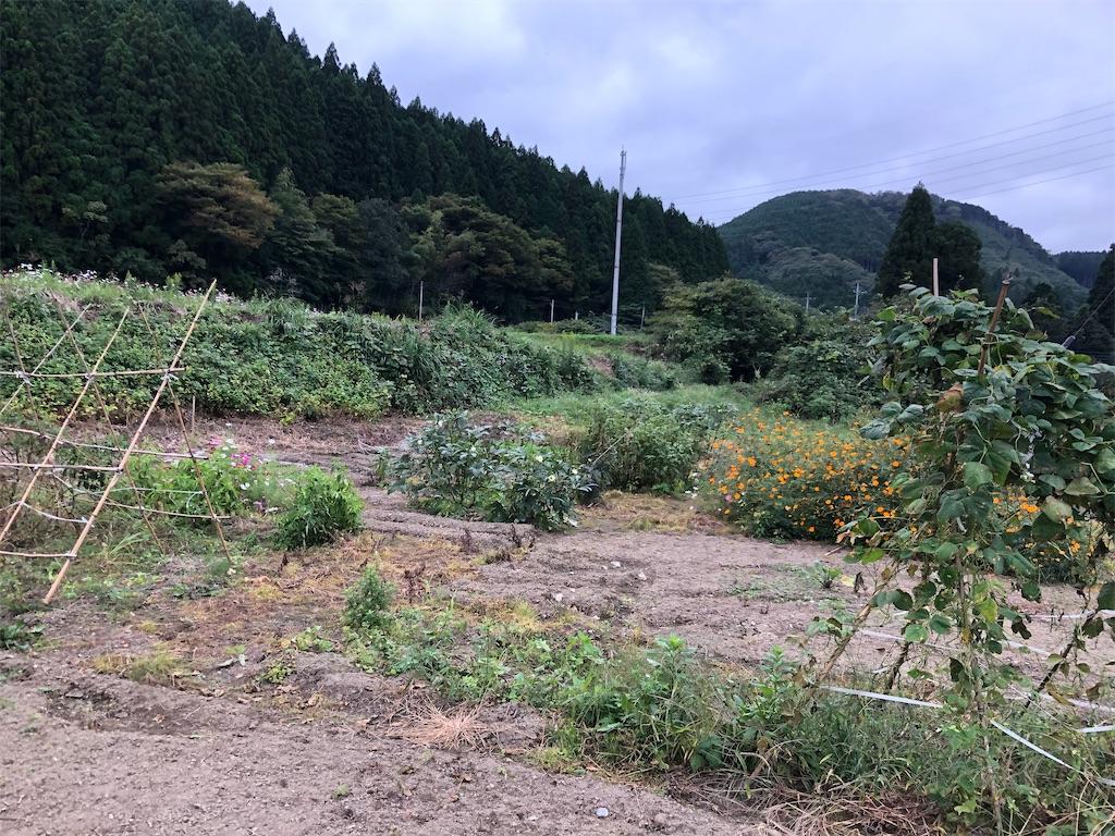 f:id:norioishiwata:20211011134627j:image