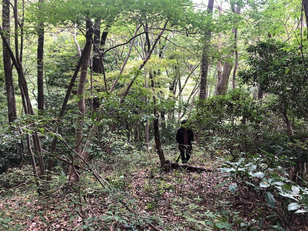 f:id:norioishiwata:20211025213408j:image