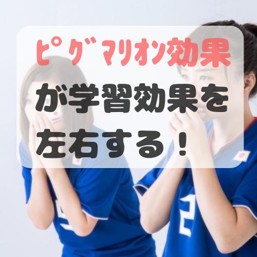 f:id:norisuke_slow_life:20190705003034p:plain