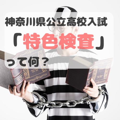 f:id:norisuke_slow_life:20190705005453p:plain