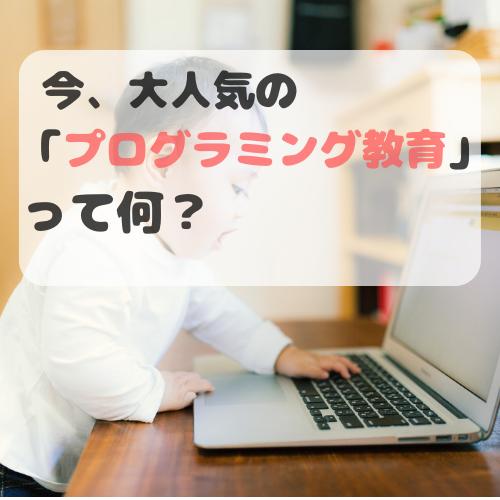 f:id:norisuke_slow_life:20190705005956p:plain