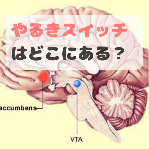 f:id:norisuke_slow_life:20190705024459p:plain