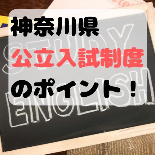 f:id:norisuke_slow_life:20190707151115p:plain