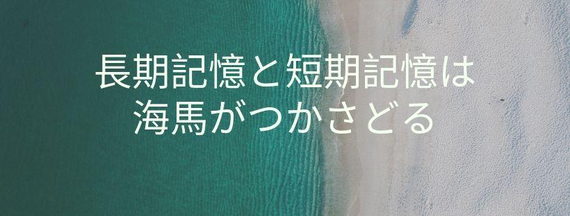 f:id:norisuke_slow_life:20190729224252j:plain