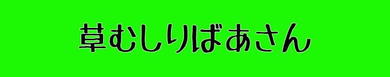 f:id:noritama77777:20171011143433j:plain