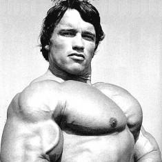 理想的な大胸筋の持ち主アーノルドシュワルツェネッガー