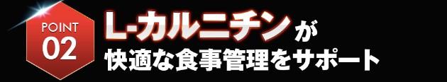 f:id:noritoikioi:20180805025342j:plain