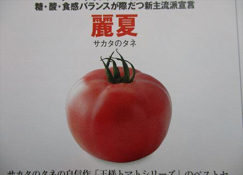 f:id:noritomi294:20170213202723j:plain