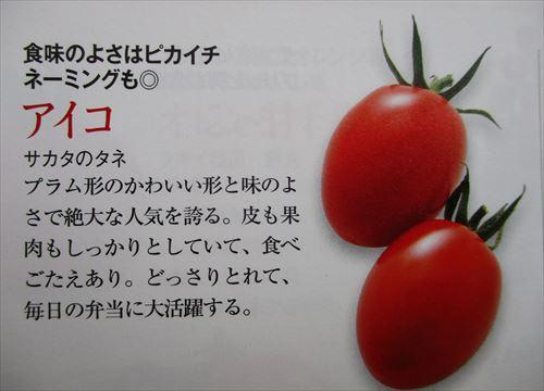 f:id:noritomi294:20170213202819j:plain
