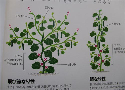 f:id:noritomi294:20170218173041j:plain