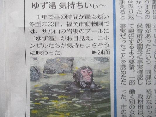 f:id:noritomi294:20181223160105j:plain