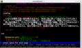 legacy_html_optimized_lynx
