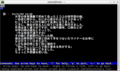 legacy_html_optimized_lynx_story