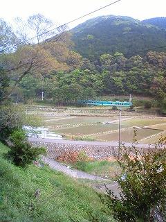 f:id:noronoyama:20110506182410j:image