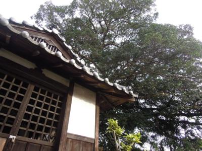 f:id:noronoyama:20111031074730j:image