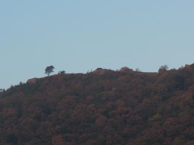 f:id:noronoyama:20111120070826j:image