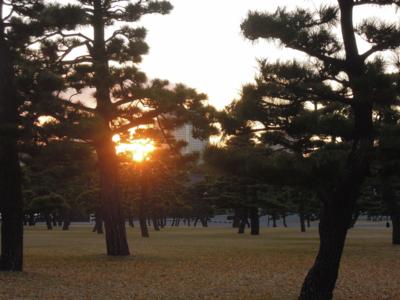 f:id:noronoyama:20111220160922j:image
