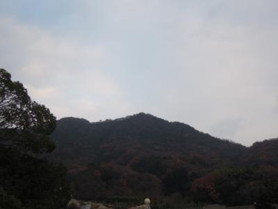 f:id:noronoyama:20120101162416j:image