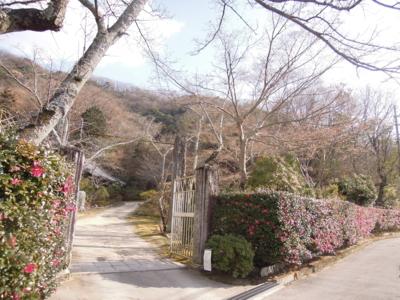 f:id:noronoyama:20120104115954j:image