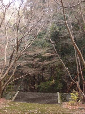 f:id:noronoyama:20120104120259j:image